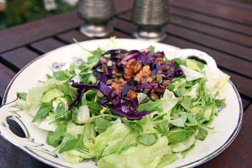 Salat med Valnødder, Rødkål, Græskarkerner og Danablu